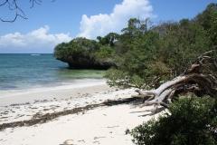 diani_beach_-6-